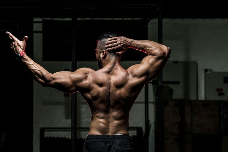 SOME ELEMENT THAT CAN CHANGE EVERYTHING FOR BODYBUILDING