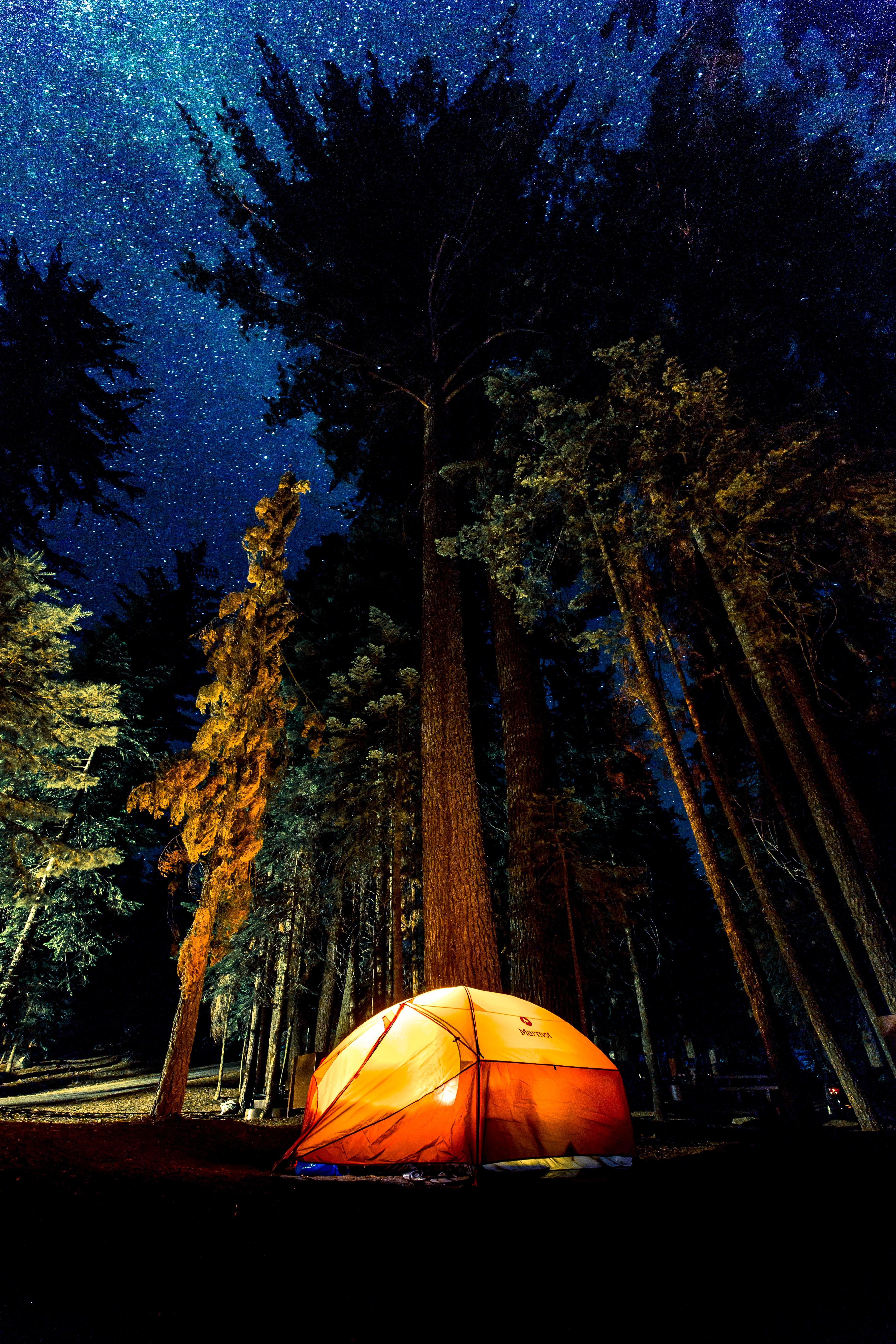 Best Remote-Control Camping Lantern